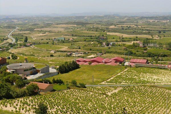 una-visita-a-laguardia-alava-viñedos-y-bodegas