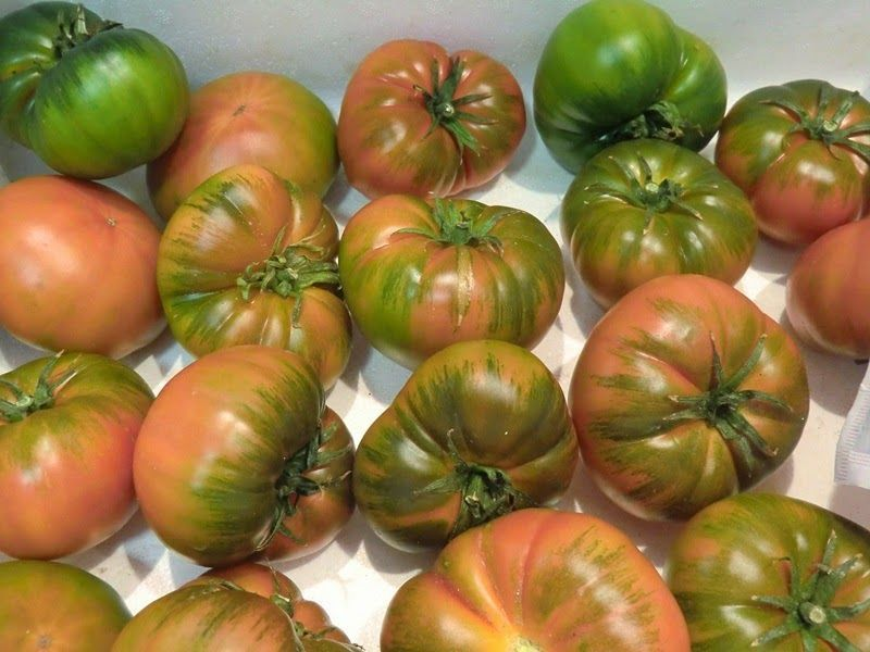 tomatesrafentucasa.com para receta de Tomate natural en tartar